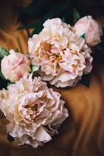 Romantic Soft Floral Backgroun...
