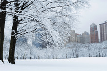 Snow Covered Central Park And NYC Skyline