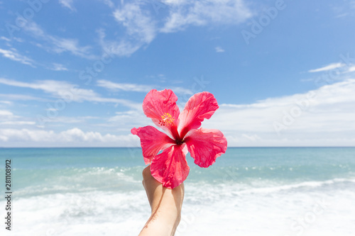 Hand holding hibiscus flower against beach view. Taiwan