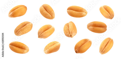 Fotografia Wheat grains isolated on white background, close-up