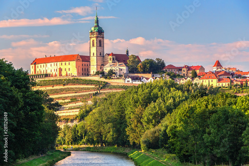 Garden Poster Vineyard Panorama or skyline or cityscape of historical city Melnik with historical castle and river Vltava and famous vineyards. Melnik is 30 km north of Prague