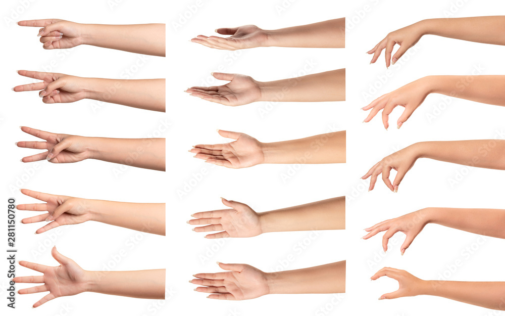 Fototapety, obrazy: Set of  woman hands with different gestures on white...