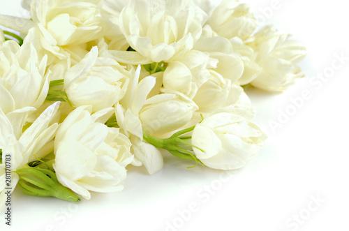 Beautiful white Jasmine flowers bloom Canvas Print