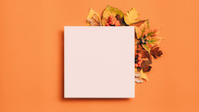 Autumn Greeting Card. White Mo...