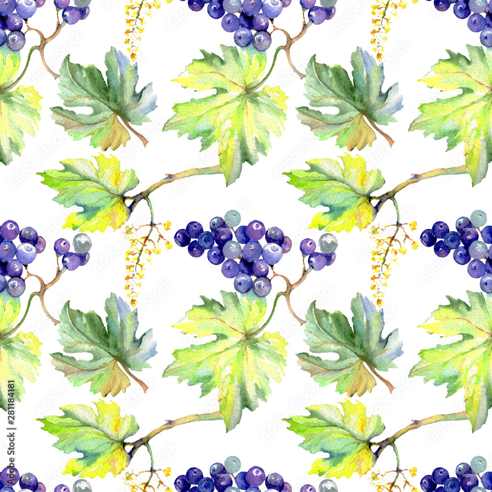 Grape berry healthy food in a watercolor style. Watercolor background set. Seamless background pattern.