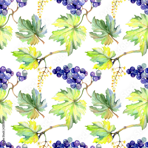 Fototapeta Grape berry healthy food in a watercolor style. Watercolor background set. Seamless background pattern. obraz na płótnie