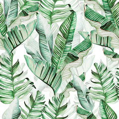 Fototapeta Do pokoju Beautiful watercolor seamless pattern with tropical leaves and banana leaves.