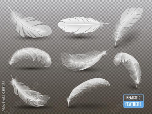 Tela White Feathers Realistic Transparent Set
