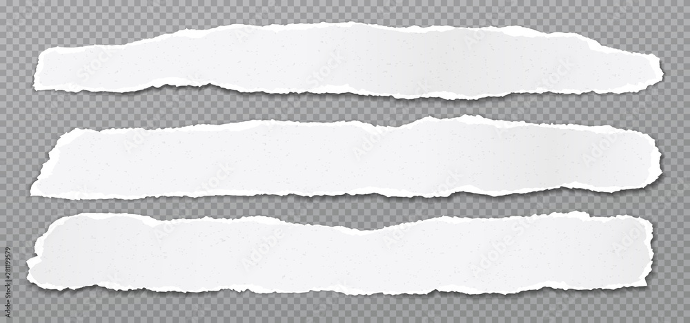 Fototapeta Piece of torn, white realistic horizontal paper strips with soft shadow are on grey squared background. Vector illustration