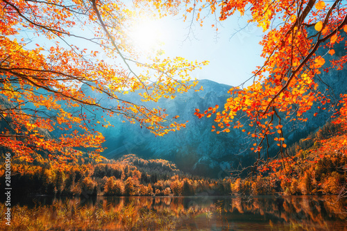 Cadres-photo bureau Automne Autumn trees on the shore of Hinterer Langbathsee lake in Alps mountains, Austria. Beautiful autumn landscape
