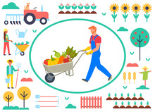 Farming People Vector, Man Pushing Cart With Vegetables. Tractor And Sunflower Field, Apple Tree And Fence, Carrots And Woman With Trolley Flat Style
