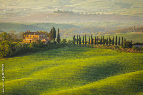 Foto  Fantastic sunny spring field in Italy, tuscany landscape morning foggy famous Cy