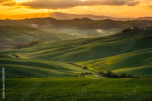 Garden Poster Light pink Fantastic sunny spring field in Italy, tuscany landscape morning foggy famous Cypress trees