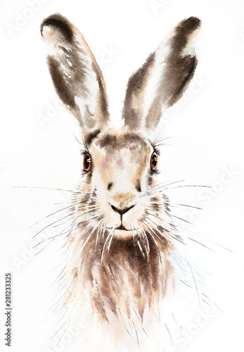 Fotografia Easter bunnies watercolor illustration, rabbit portrait isolated