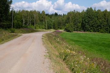 Fototapeta na wymiar road in the countryside