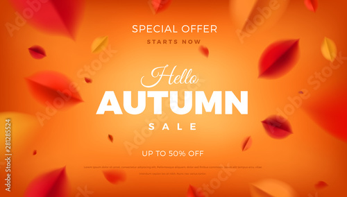 Fototapeta Autumn sale banner background with red leaves, fall nature vector promo design elements. Web layout template obraz