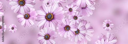 Hintergrund-Blumenmuster vo...