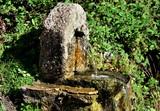 Fototapeta Do pokoju - fontaine de jouvence