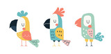 Fototapeta Fototapety na ścianę do pokoju dziecięcego - Cute parrots in a childish scandinavian style. Funny kids vector illustration. Cartoon hand drawn colorful set.