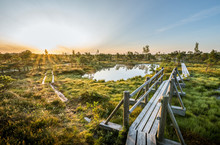 Warmly Colored Sunrise Over A Foggy Swamp. Aerial View Of Stunning Landscape At Peat Bog At Kemeri National Park In Latvia. Wooden Trail Leading Along The Lake Surrounded By Pounds And Forest.