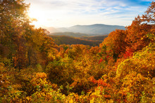 Autumn Burst In The Smoky Moun...