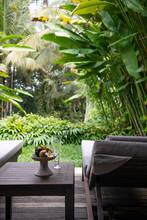 Sun Lounger In Tropical Garden...