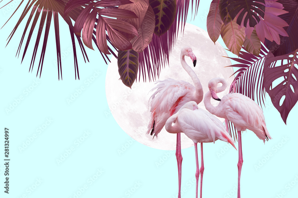 moon and flamingo background design with tropical leaves, can be used as background, wallpaper