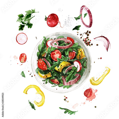 Ingelijste posters Waterverf Illustraties Fresh Salad, flying ingredients. Watercolor Illustration