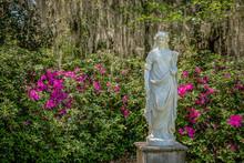 Statue In Azalea Garden In Charleston SC