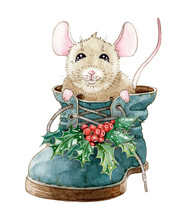 Watercolor Illustration Of A Funny Little Mouse, Sitting In The Shoe. Hand Drawn Cute Rat In A Boot With Holly Leaves, Isolated On White Background
