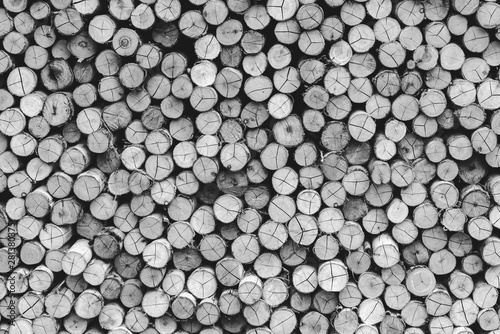 Poster Firewood texture wall firewood - stacked of firewood prepare for the fireplace, barbecue, Background and texture - Black and White color