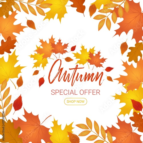 Fototapeta Autumn offer banner.Special sale. Vector background with falling autumn leaves obraz na płótnie