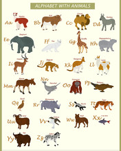 English Alphabet With Wild Ani...