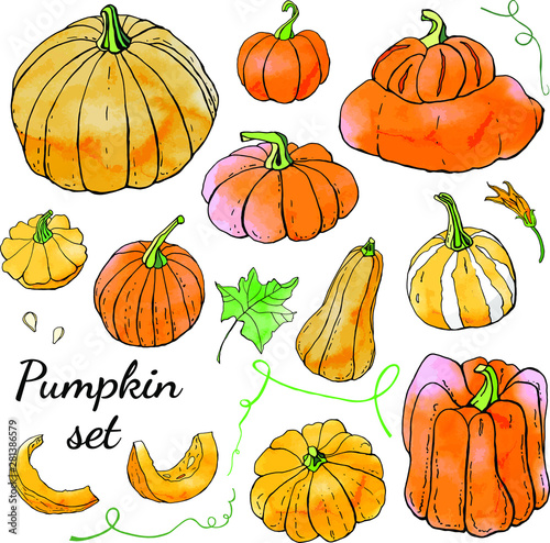 Acrylic Prints Birds in cages Collection of bright orange autumn pumpkin doodles. Fall harvest. Vector stock set. Cute icons with watercolor texture. Can be used for printed materials. Hand drawn. Halloween, thanksgiven.