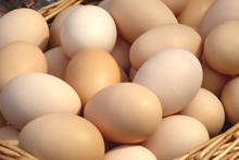 Close Up Of An Eggs Isolated B...
