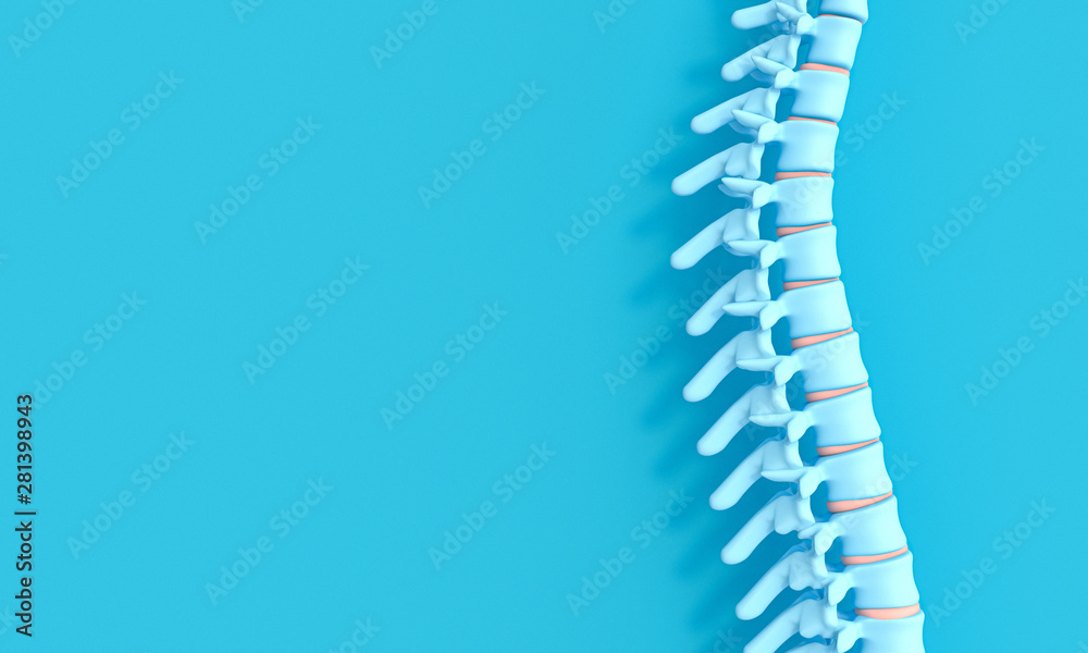 Fototapeta 3d render image of a spine on a blue background.