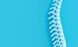 Leinwanddruck Bild - 3d render image of a spine on a blue background.