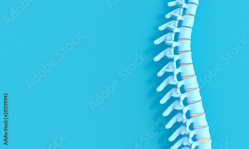 Fotomural 3d render image of a spine on a blue background.