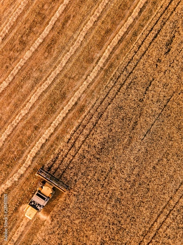 Foto auf AluDibond Ziegel Aerial view of the combine harvester agriculture machine working on ripe wheat field.