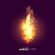 Realistic Fire Flame Vector