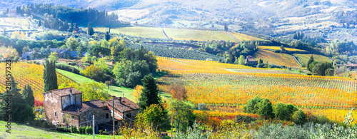 Autumn landscape in beautiful Tuscany countryside Canvas