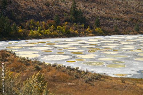 Spotted Lake Osoyoos BC Canada Canvas Print