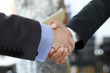 Businesspeople handshaking in office