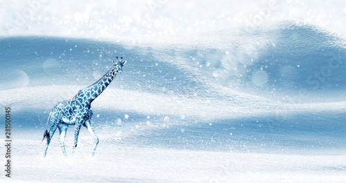 Winter magical Christmas image. Blue giraffe on a snowy background. Snowfall. Winter fairyland. Free space for text. Wide format.