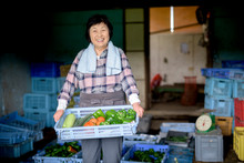 Portrait Of Smiling Woman Holding Crate Of Freshly Harvested Vegetables