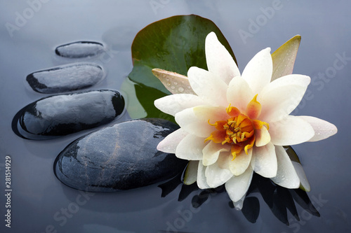 Poster Waterlelies Spa still life with water lily and zen stone in a serenity pool