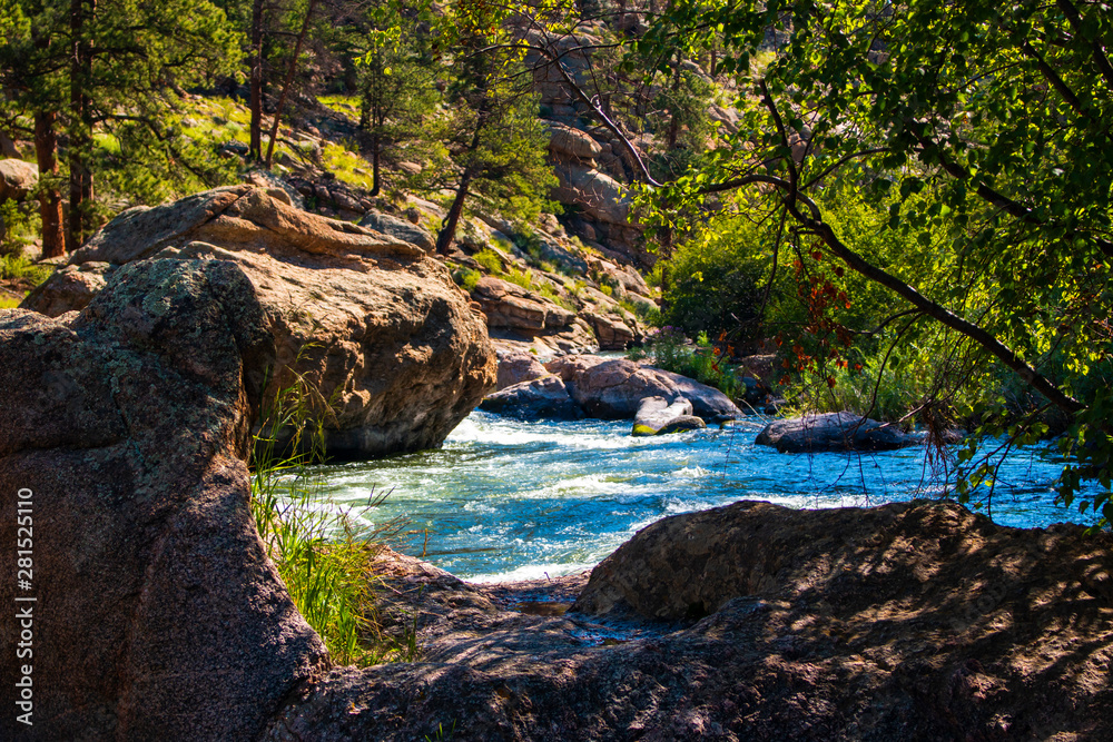 Fototapety, obrazy: Whitewater at the headwaters of the South Fork of the South Platte River in Eleven Mile Canyon Colorado