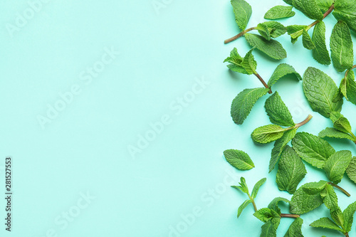 Fresh green mint leaves on blue background, flat lay. Space for text