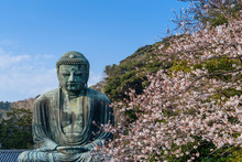 View Of Buddha Statue And Cherry Blossom Trees Against Sky