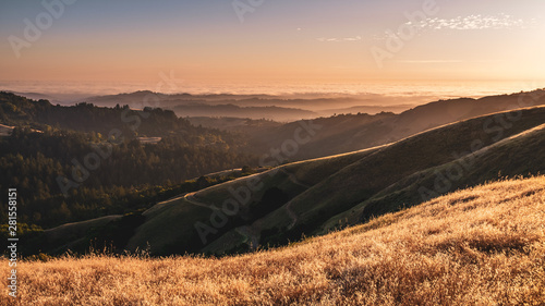 Photo sur Toile Brun profond Sunset view of layered hills and valleys; sea of clouds visible in the background; Santa Cruz mountains, San Francisco bay area, California